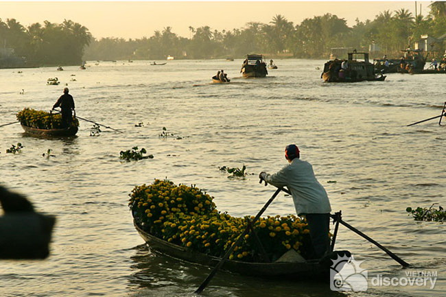 Phong Dien floating market in the early morning -Mekong Day tour from Ho Chi Minh City