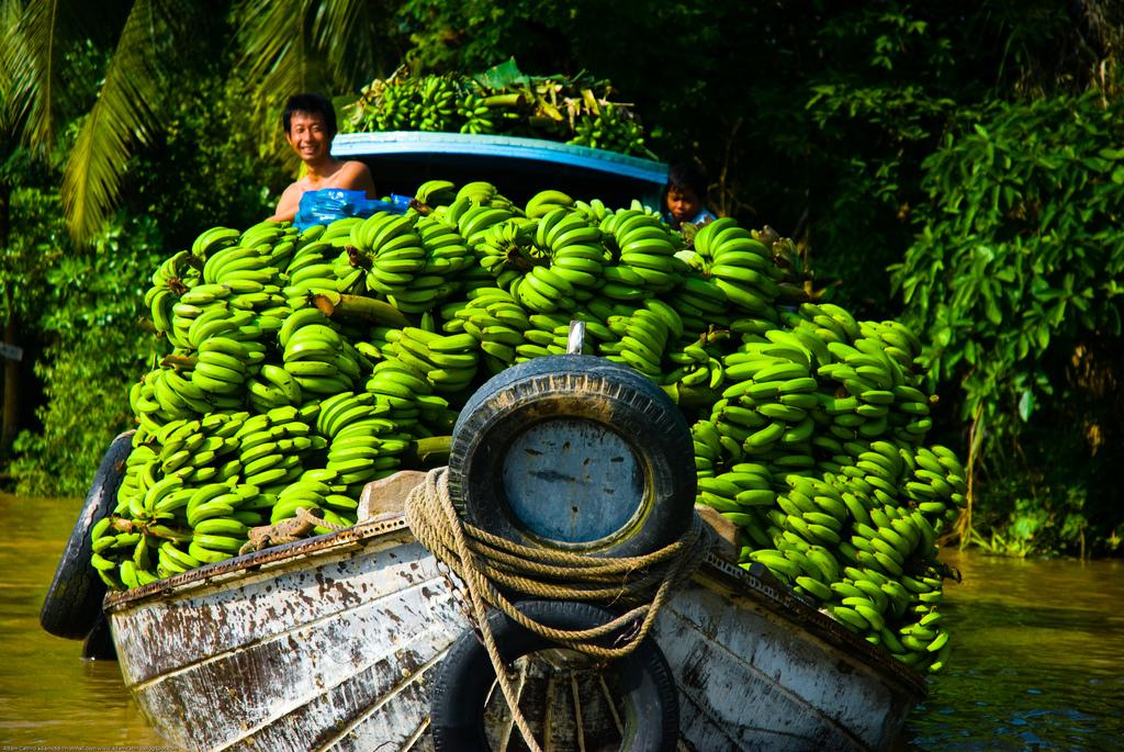 Bananas on boat in Phong Dien floating market - Mekong delta day tour