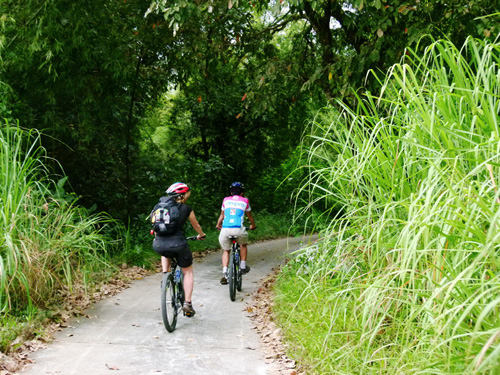 Cycling in Cat Tien National Park Day trip from Ho Chi Minh City