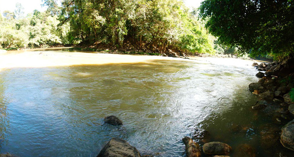 Stream in Cat Tien National Park Day trip from Ho Chi Minh City