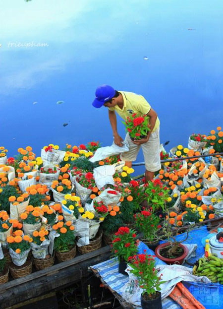 HCMC-Binh-Dong-flower-floating-market-Ho-Chi-Minh-City-6