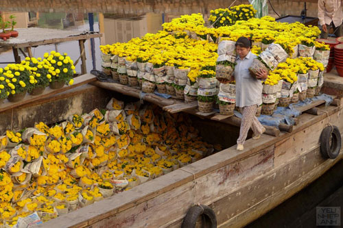 HCMC-Binh-Dong-flower-floating-market-Ho-Chi-Minh-City-7