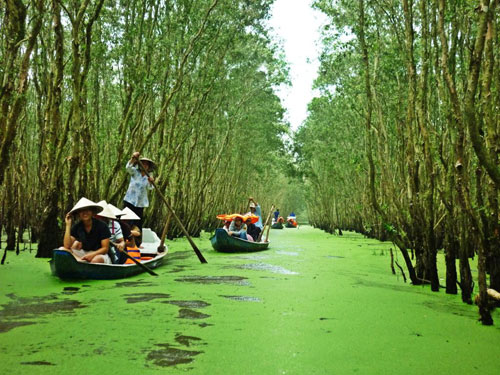 HCMC-Boat-trip-in-Tra-Su-Forest-Guide-to-travel-Southwest-Vietnam-in-flooding-season