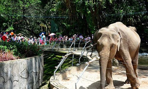 Saigon Zoo and Botanical Gardens - Ho Chi Minh City tours