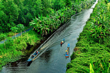 Boat trip to discover U Minh Ha National Park - Tour in Mekong Delta Vietnam
